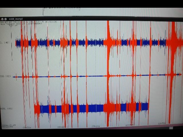 Terremoto in Campania: registrata una scossa di magnitudo 3.1