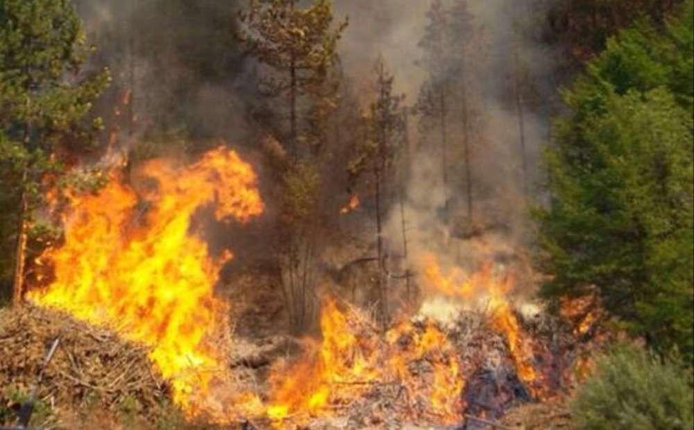 Inferno nel Vallo di Diano: il fuoco avanza, bruciate tre auto dei volontari