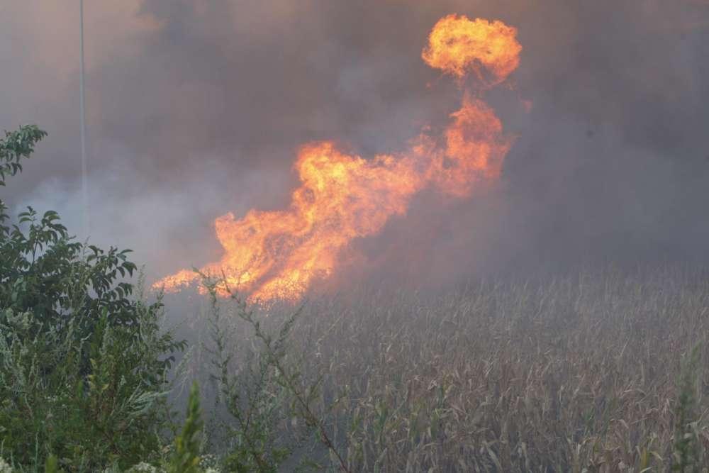 Non ancora domato l'incendio tra Casertavecchia e Castel Morrone (Foto)