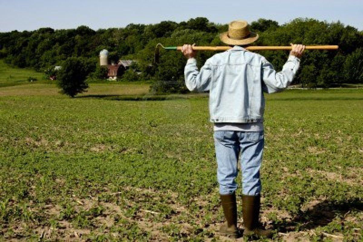 Diocesi vende terreno fittato, agricoltore denuncia due società di Teverola
