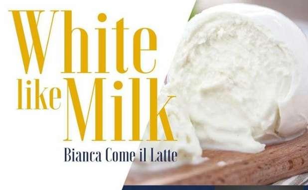 """""""Bianca come il latte"""", la grande kermesse in programma a Grazzanise"""