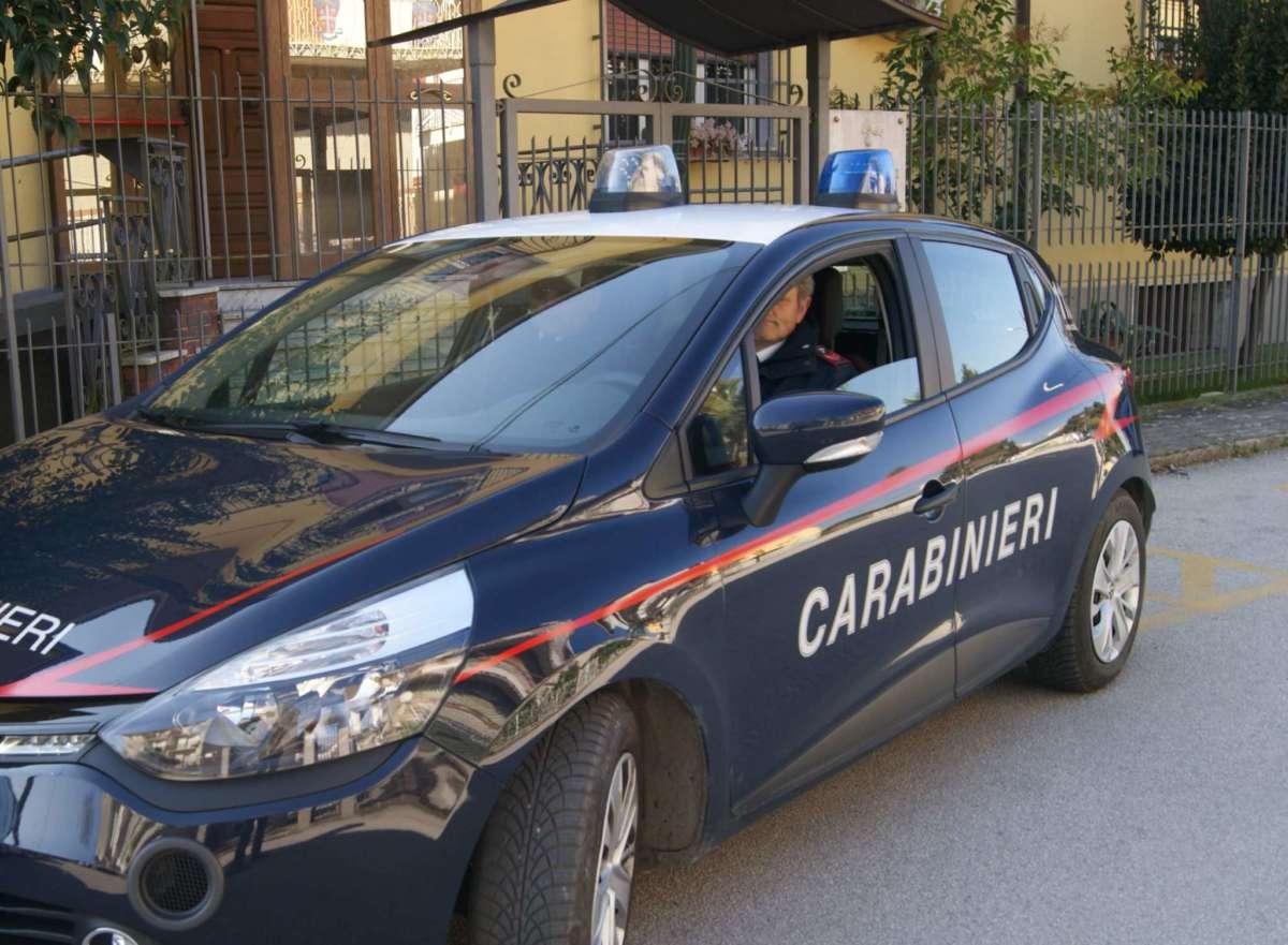 Commercio specie in via di estinzione: sequestri e controlli dei Carabinieri