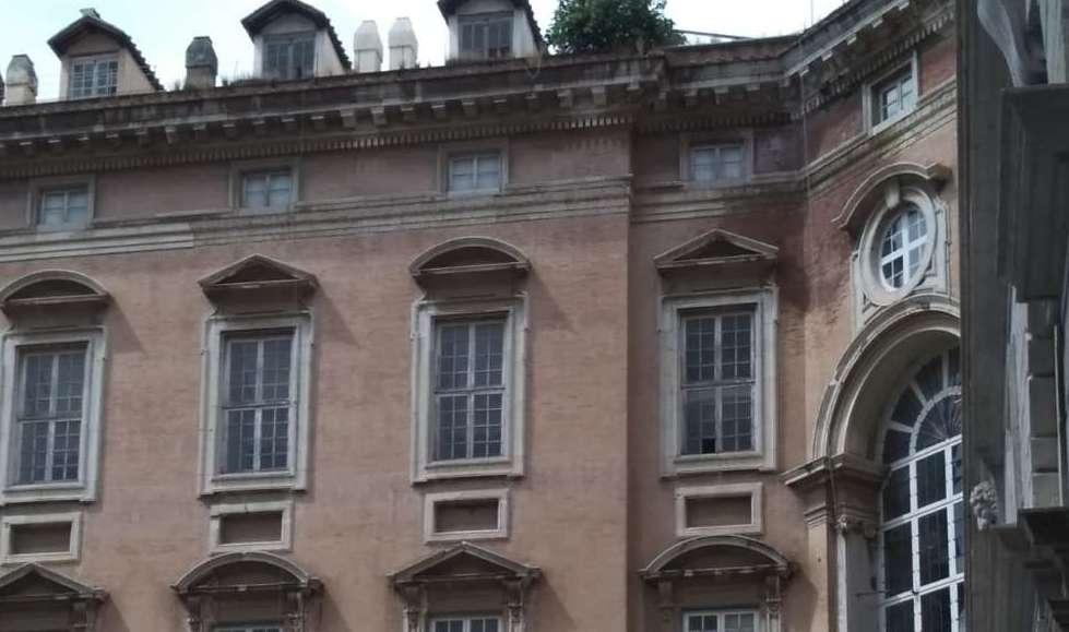 """Albero sulla facciata della Reggia, Felicori: """"I lavori arriveranno ad ottobre"""""""