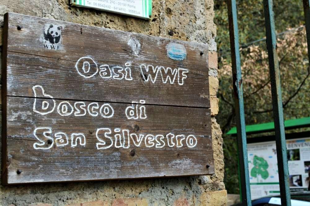 L'Oasi Wwf nel Bosco di San Silvestro rinnova gli appuntamenti dopo la pausa estiva