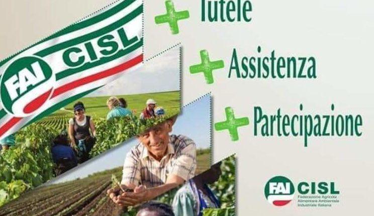 Parte #faidipiu, la nuova campagna Fai-Cisl contro la disoccupazione agricola