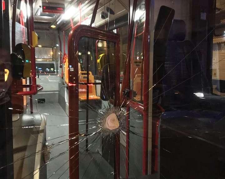 «I cani senza museruola non possono salire», sfonda il parabrezza del bus N2