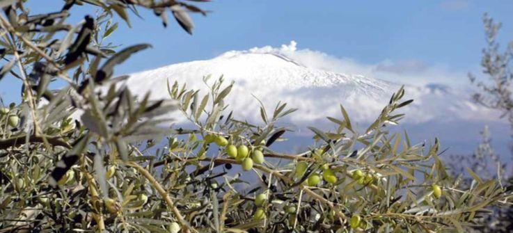 Sirena d'Oro, dal Vesuvio all'Etna: il premio di Sorrento fa tappa in Sicilia