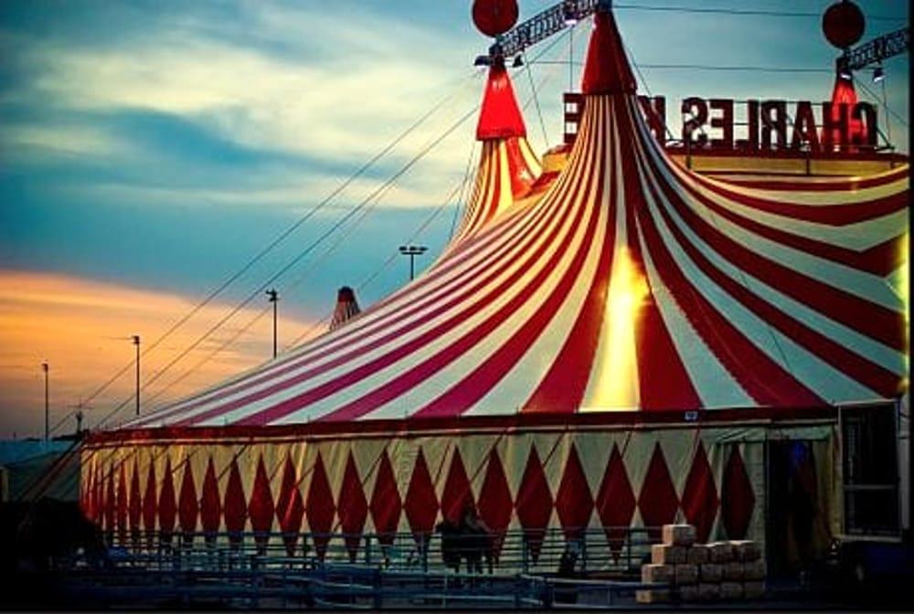 Il circo fa tappa ad Avellino, scoppia la protesta degli animalisti
