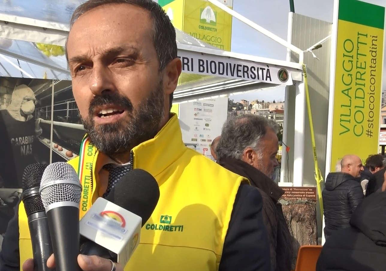 Fondi europei: Coldiretti Campania, fermi 4.558 progetti, oltre metà giovani