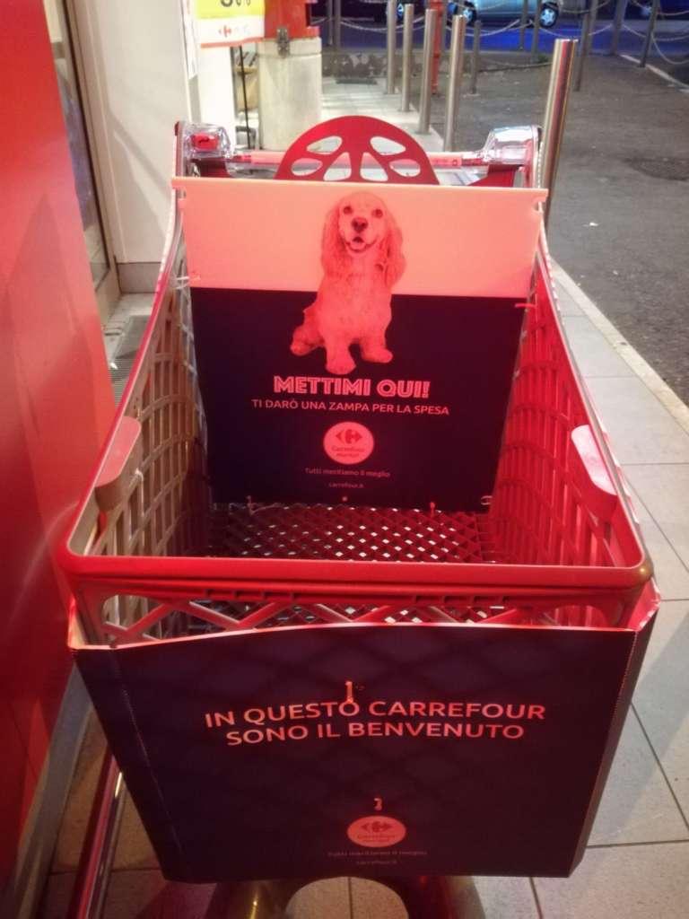 Arriva a Napoli il carrello per i cani: una zampa per la spe