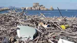 """Rifiuti sulla spiaggia di Rovigliano, i volontari: """"Non puli"""