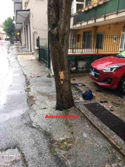 Buccino:con la moto contro un albero, 27enne in rianimazion